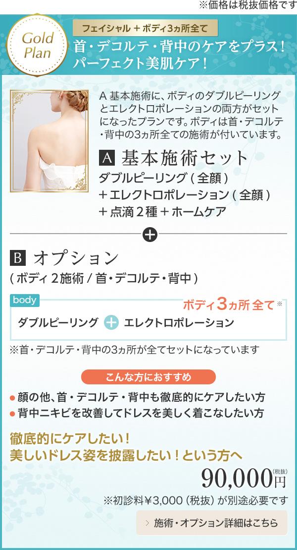 Gold Plan 【フェイシャル+ボディ3ヵ所全て】首・デコルテ・背中のケアをプラス!パーフェクト美肌ケア!