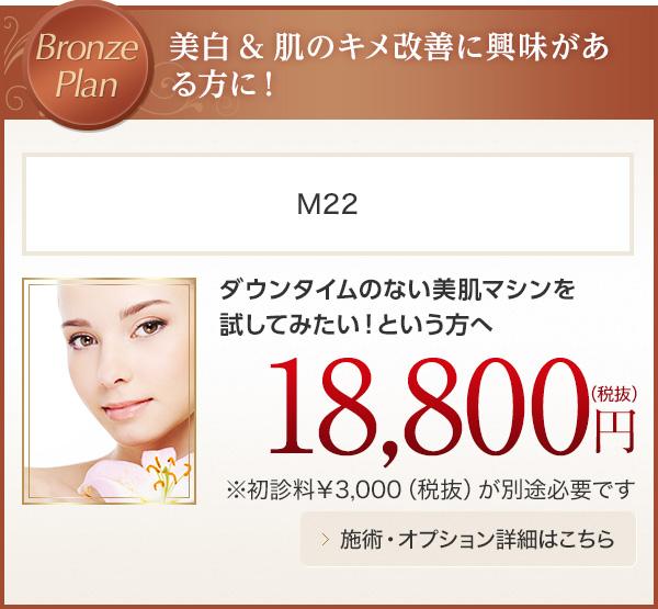 Bronze Plan 美白&肌のキメ改善に興味がある方に! M22 18,800円